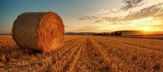 249638__sunset-over-hay-field_p